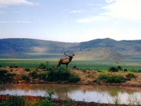 La Palma Ranch